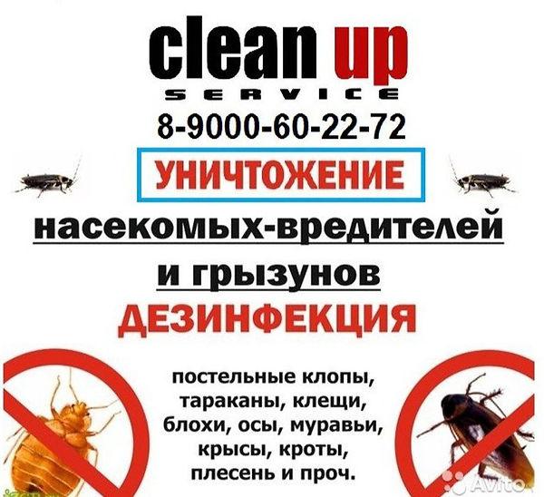 Уничтожение насекомых вредителей грызунов дезинфекция Сатка