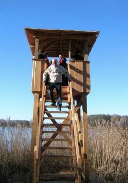 Fugletårnet i rørskov
