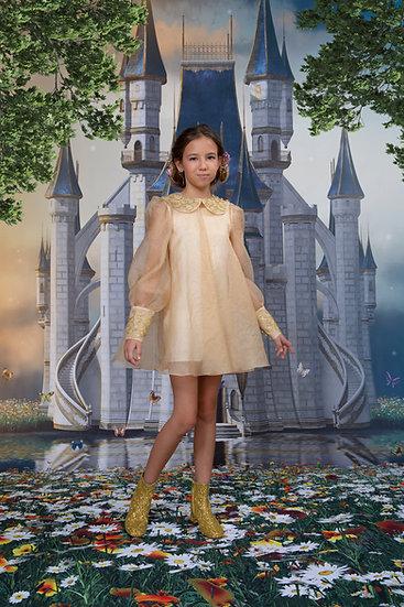GOLD ORGANZA DRESS