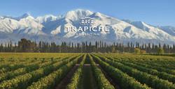trapiche1