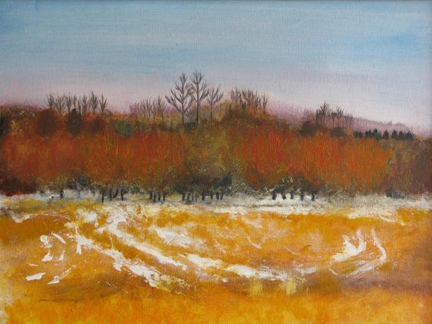 Winter landscape in orange 2013.jpg
