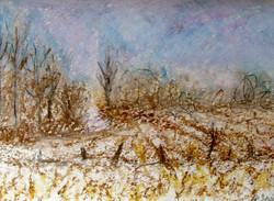 WS oil pastel sketch 39.jpg