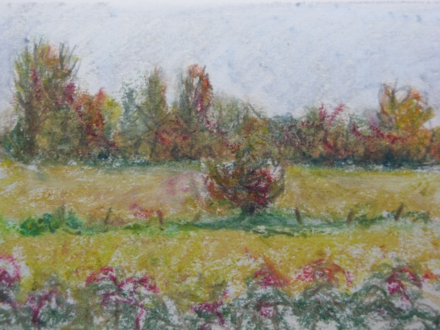 WS oil pastel sketch 40.jpg