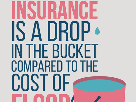 Insuring Your Property: What Exactly Are You Paying For?