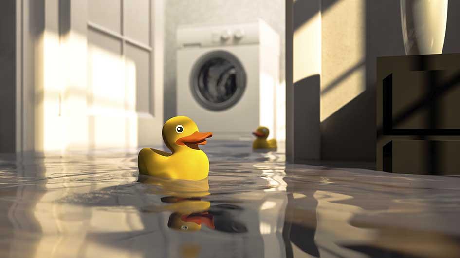 NHS Brooklyn home flood insurance wind flooding sewer backup NFIP policy coverage rain hurricane claim