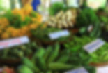 Organic Farm Picnic Resort, Cambodia