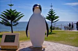 Penguin Waterfront Escape