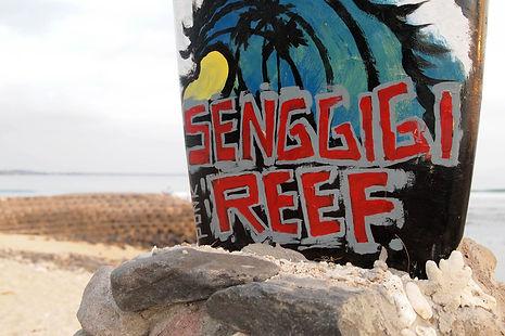 Lombok Senggigi Hotel tours to Mr. Rinfani, scuba diving, surfing, trawangan island, Sekotong Bay Gili islands and waterfalls guli islands