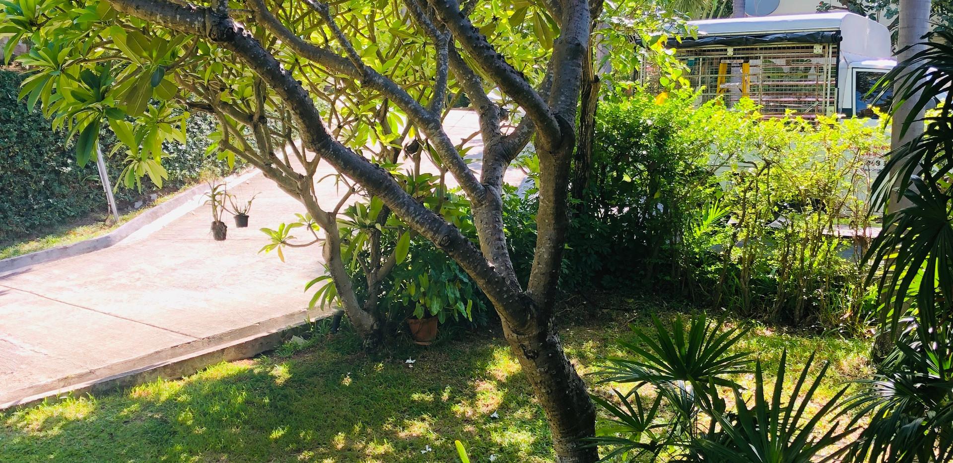 Baan Saitara Villas, Koh Samui
