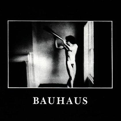 Bauhaus -In The Flat Field