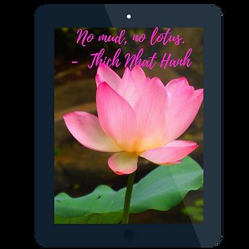 Nomud, no lotus.png