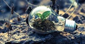 ¿Cómo está ayudando la tecnología IoT al medio ambiente?
