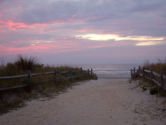 Pathway to the beach through the dunes at sunrise