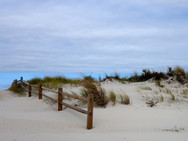 Pathway among the dunes leaving the beach