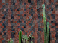 Cacti in front of a wall of volcanic stone known as Tezontle stone