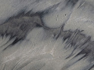 Bird prints and patterns left in the sand by receding waves