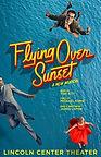 Flying Over Sunset.jpg