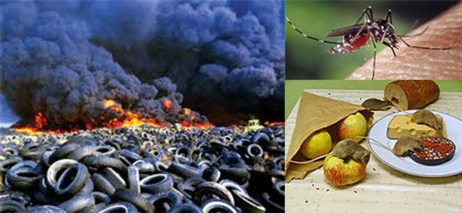 Waste Tire Pollution - Fire - Infestatio
