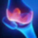 4-is_160316_articular_cartilage_knee_800