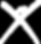 x logo white.png