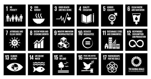TheGlobalGoals_Logo_and_Icons_Mono.jpg
