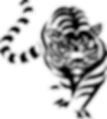 transparent tiger.png