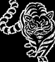 transparent tiger.png
