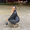 Thumbnail: Black Top Notch Corset Jumpsuit