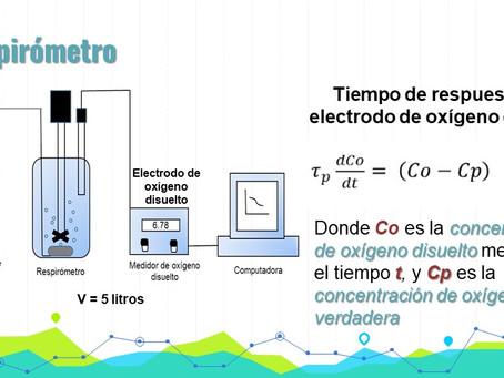 (275) Estimación  directa del KLa  mediante un algoritmo de optimización en un respirómetro nitri...