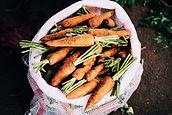 Органическая Морковь