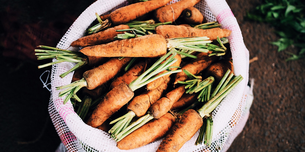 How Does Your Garden Grow? Discovering the Carrot Family