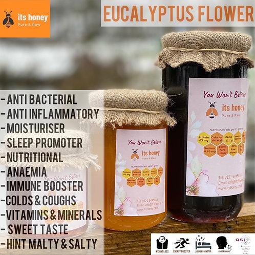 Honey Eucalyptus Flower