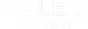 Valeo-logo3-text-only-white.png