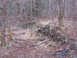 Draper Maynard foundations