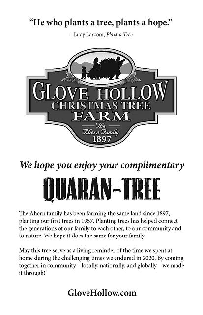 GloveHollow_Quaran-Tree_BkltCvr.jpg
