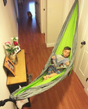 little kid hammock.jpeg