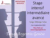 Stage intensif intermédiaire-avancé (Tango)