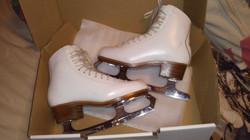 Skates - Gam 0095