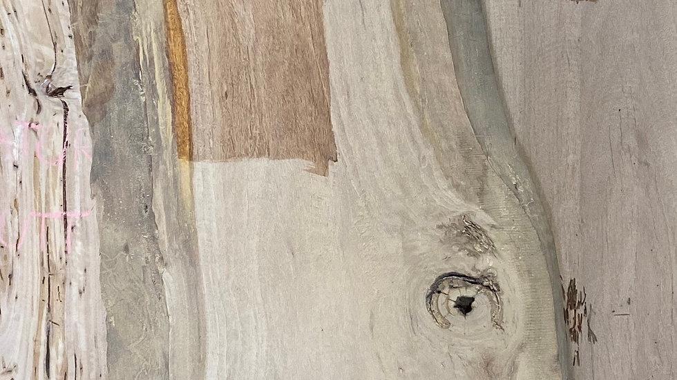 Live edge slab ( Blonde swamp mahogany)