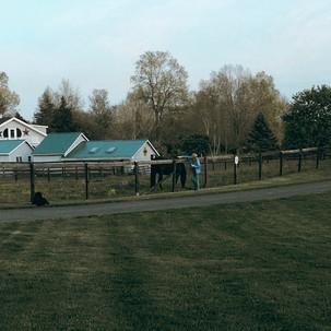 Wistelewood B&B Farm