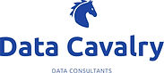 data Cavalry logo trans.jpg