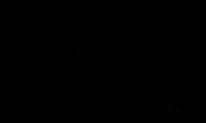 6 Löwe 600.png