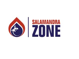 【スタートアップ深層】Salamandra Zone - 空気中の有毒ガス、ウィルスを分子レベルで分解