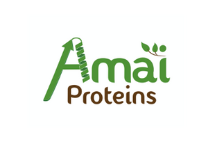 【スタートアップ深層】Amai Proteins - 独自の発酵技術により世界初の健康的な砂糖代替品を実現