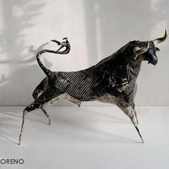 Space bull
