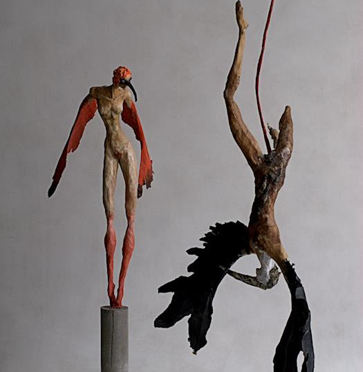 Ibis & Ave del Paraíso