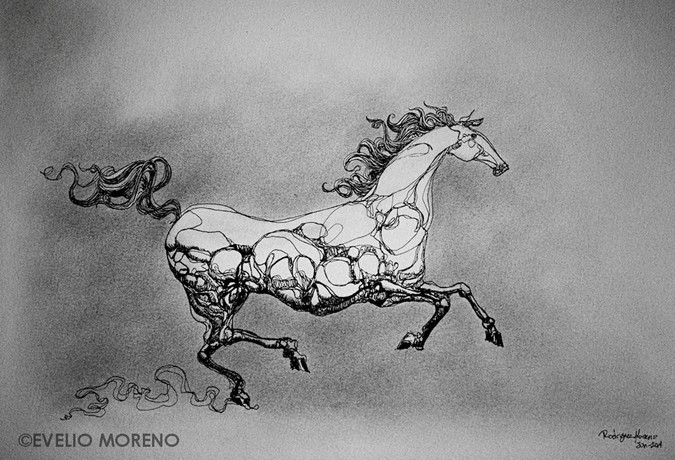 Drawing of a horse.