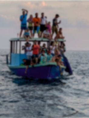 dolphin cruise_edited.jpg
