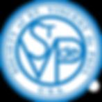 STVDP logo_rev.png
