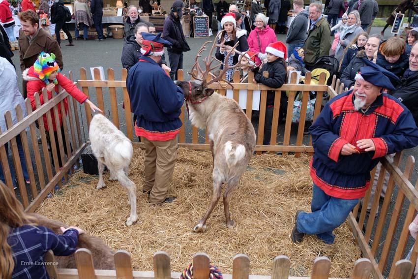 Rye Christmas Festival 2016nce.88